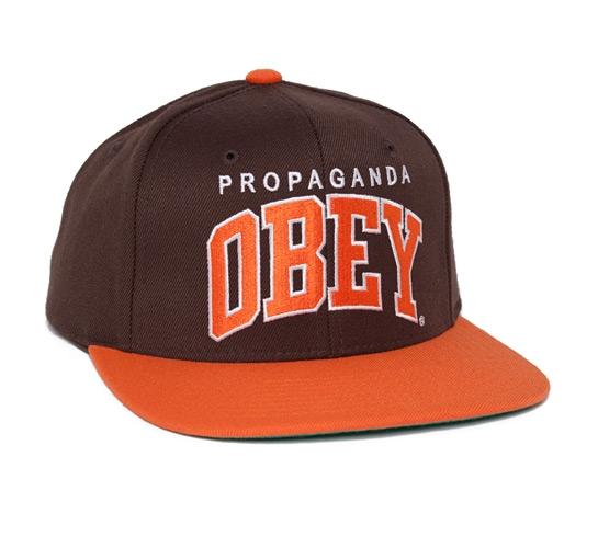 Obey Throwback Snapback Cap (Brown)