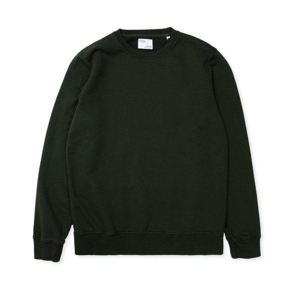 Colorful Standard Classic Organic Crew Neck Sweatshirt (Hunter Green)