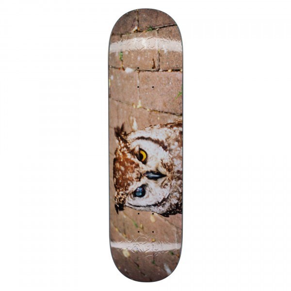 "Fucking Awesome Owl Photo Jason Dill Skateboard Deck 8.18"""