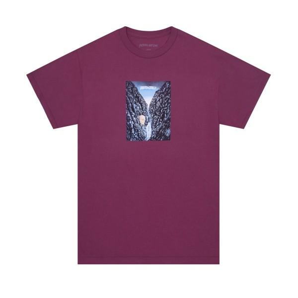 Fucking Awesome Waterfall T-Shirt (Berry)
