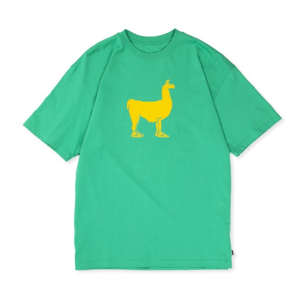Nike SB Paul T-Shirt (Stadium Green)