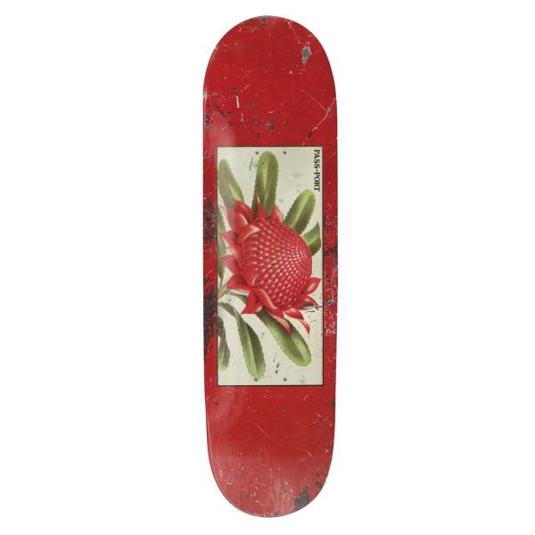 "PASS~PORT Tin Floral Waratah Skateboard Deck 8.25"" (Red)"